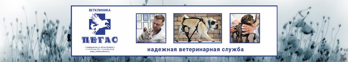 Ветеринарная клиника Пегас в Симферополе