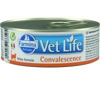 Farmina VetLife Convalescence Консервы паштет 85г в период востановления для кошек