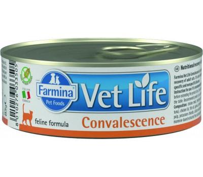 Купить Farmina VetLife Convalescence Консервы паштет 85г в период востановления для кошек