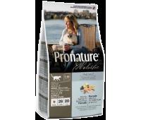 PROnature Holistic для кошек Лосось с рисом