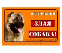 """Collar Наклейка """"Осторожно злая собака!"""" кавказская овчарка 3719"""