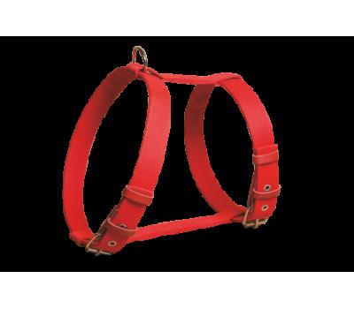 Купить (0640) Before Шлея брезент 20мм  Красный