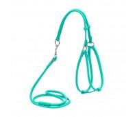 Шлея Collar + Поводок 90см WAUDOG Glamour 6мм 42-60/46-64см кожа  Салатовый