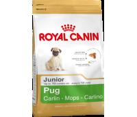 Royal Canin Pug Junior Роял Канин для щенка Мопса